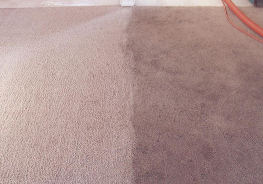 Leitrim Carpet Cleaner
