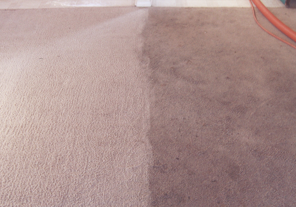 Wicklow Carpet Cleaner