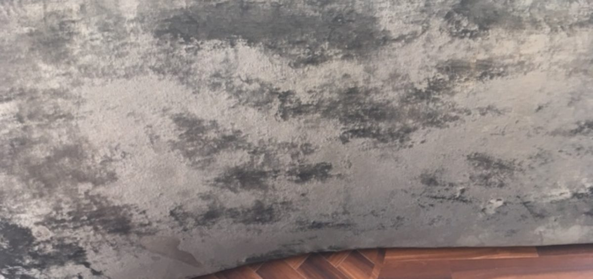 Sofa Damaged From Carpet Cleaning